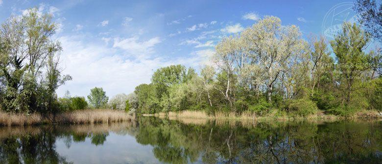 Fotokurs - Naturfotografie im Nationalpark Donau-Auen