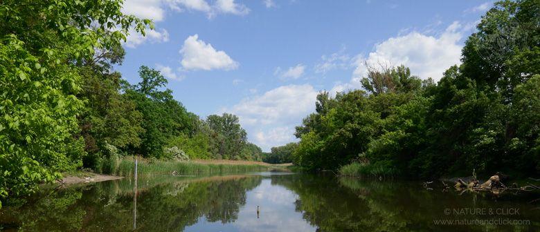 Naturführungen im Wiener Prater