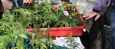 Pflanzentauschmarkt Henndorf