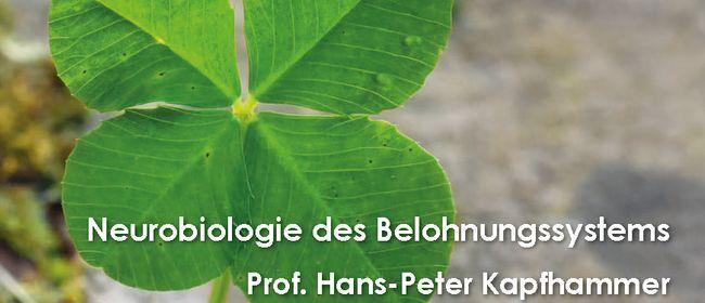 WIP7-Vortrag: Neurobiologie des Belohnungssystems