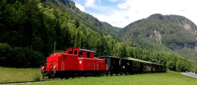Sonderzug mit Diesellokomotive beim Wälderbähnle