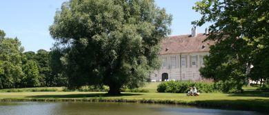 16. Haydn-Tage Schloss Rohrau