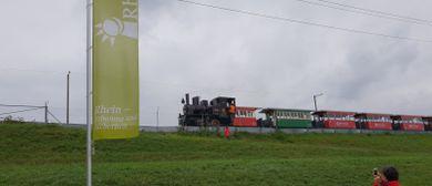Rhy-Schopf in Widnau
