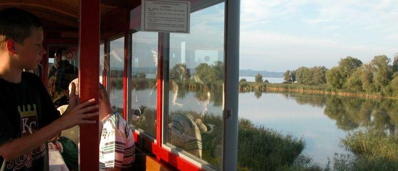 Vogel-Exkursion mit der Dampflok an die Schleienlöcher