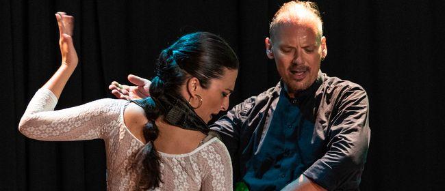 Pure Ausdruckskraft des Flamenco