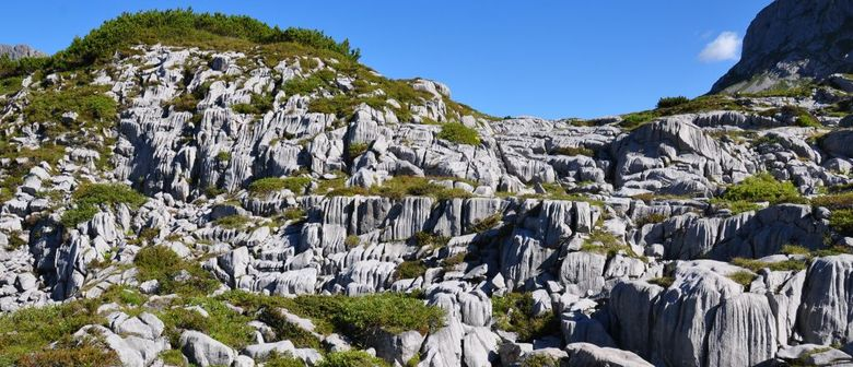 "inatura Naturvielfalt – Kurs ""Geologie beim Wandern"""