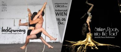 Zeitgenössischer Circus - 'hochSpannung'