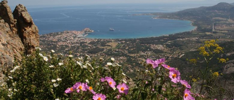 Infoabend: Korsika Wanderreisen