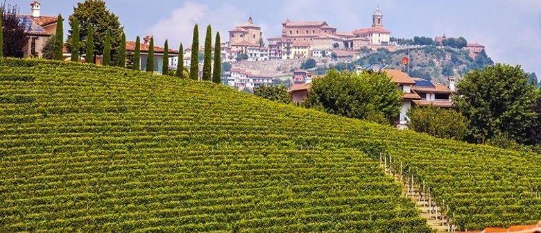 Weinseminar Piemont