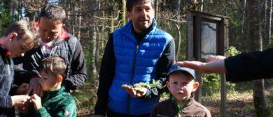 Walderlebnistag für Väter und Kinder