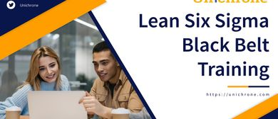 Lean Six Sigma Black Belt Certification Training in Vienna,