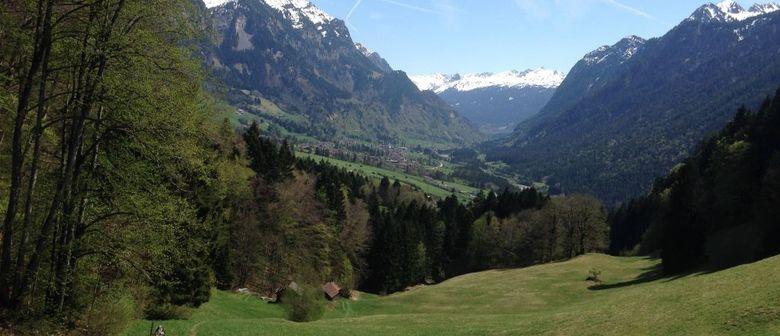 Vielfalt schauen:Streifzug durch die Klostertaler Bergwälder