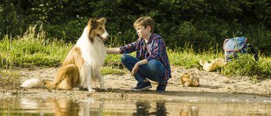 KINDERKINO: Lassie - eine abenteuerliche Reise