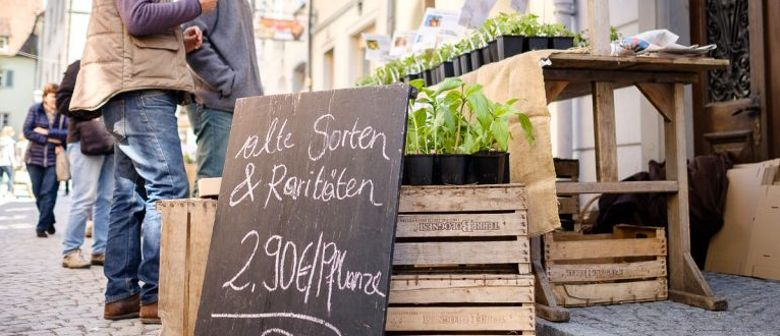 erdreich Setzlingsmarkt in Feldkirch