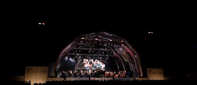 Festival VADUZ CLASSIC 2020: CANCELLED
