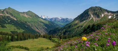 BERGaktiv Gebirgswanderung - auf den Spuren der Walser