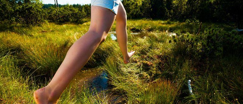 5-Sinnes-Wanderung durch den Wald und das Hochmoor Fohramoos
