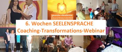 6. Wochen SEELENSPRACHE Coaching-Transformations-Webinar