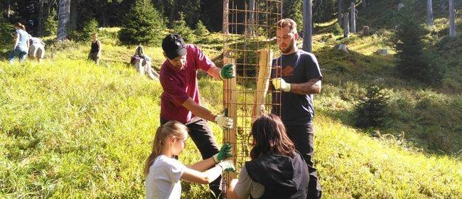"""Umweltbaustelle """"Vielfaltertage im Europaschutzgebiet Verwal"""