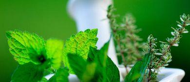 Deo Selbermachen - DIY Kosmetik aus der Natur