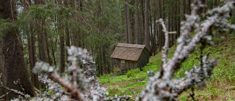 Geführte Sagenwanderung vom Kristberg ins Silbertal
