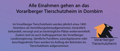 Spendenflohmarkt für das Tierschutzheim Vorarlberg