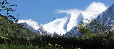 Frauenwanderwoche - Unterwegs im Halltal - Alpenp. Karwendel