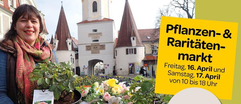 1. Kremser Pflanzen- & Raritätenmarkt