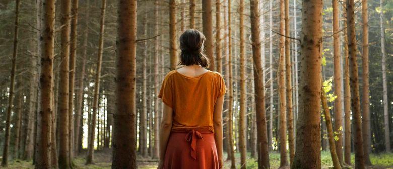 Shinrin Yoku – Waldbaden mit Nadine Maier