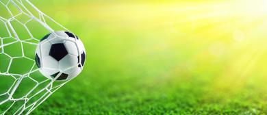 Elfis Kulturkoffer – Die Fußballrevue
