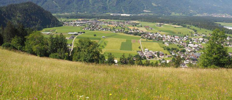 """""""Klimawandelanpassung und Naturvielfalt am Ludescherberg"""""""