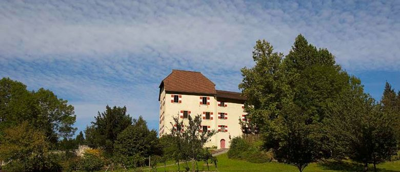 artHEURIGEN auf Schloss Amberg