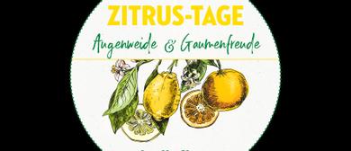bellaflora Zitrus-Roadshow Donaustadt