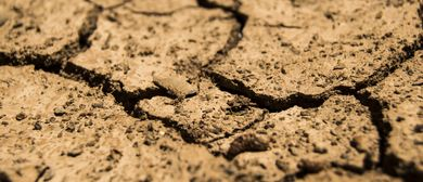 Boden im (Klima-) Wandel: CANCELLED