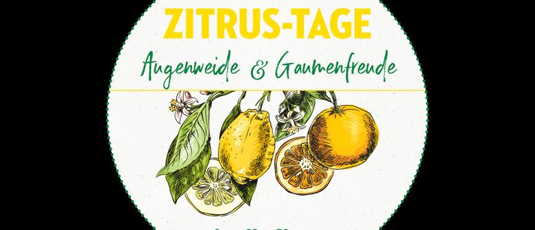 bellaflora Zitrus-Roadshow Oberwart