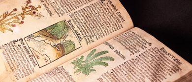 Heilpflanzen – Für alles ist ein Kraut gewachsen