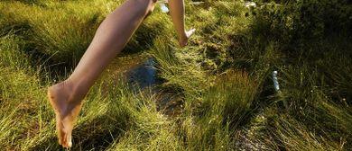 Hochmoor-und Waldwanderung für Jung und Alt durchs Fohramoos