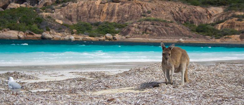 Australien - Von Ozean zu Ozean DIAVORTRAG