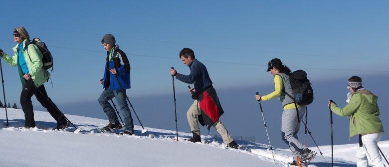 Großes Schneeschuhwander-Finale