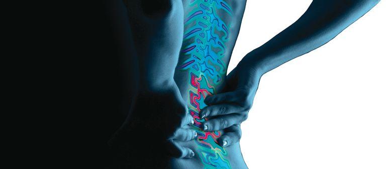 Neue ganzheitliche Wirbelsäulentherapie: Von A. bis SpineMed