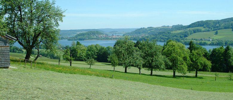 Sonnenaufgangs-Picknick am Obertrumer See